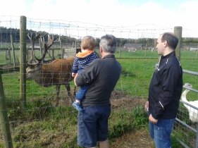 Family trip to a farm with Grandad, seeing a Deer up close!