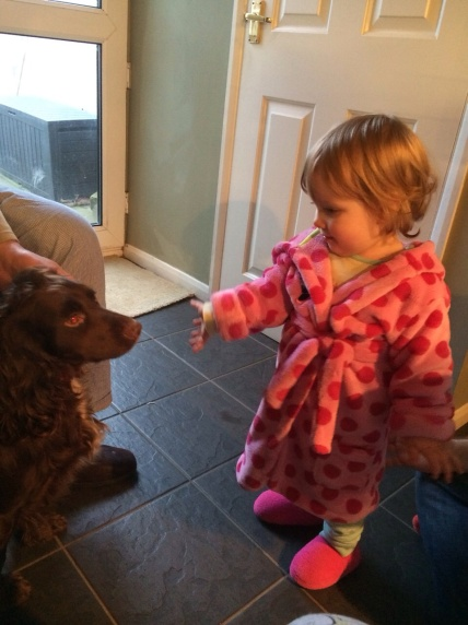 gaining confidence with family pets